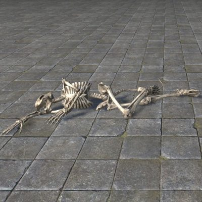 Corpse of Mayhem, Khajiit