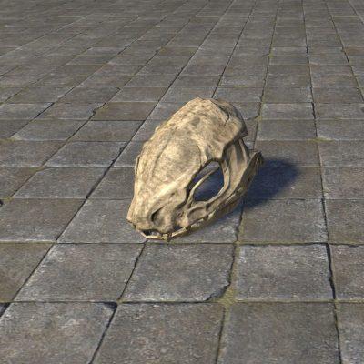 Sacred Guar Skull