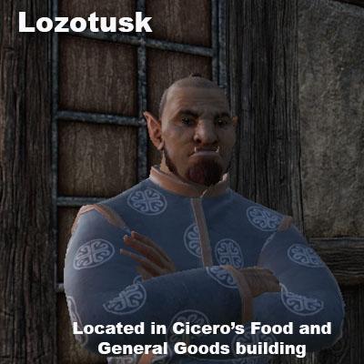 lozotuskhollowcity