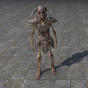 Target Skeleton, Robust Humanoid