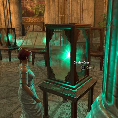 Relics of Summerset Display Case