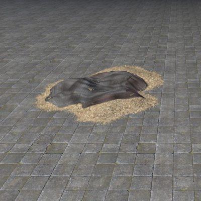 Rough Hay Bed, Sloppy