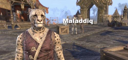 maladdiq home goods furnisher