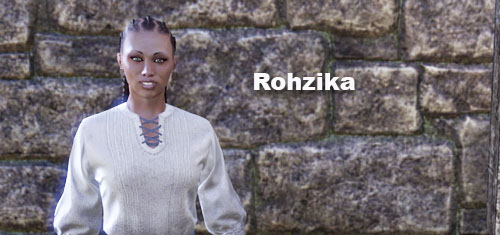 rohzika home furnish vendor