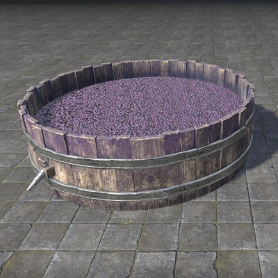 Design Alinor Grape Stomping Tub