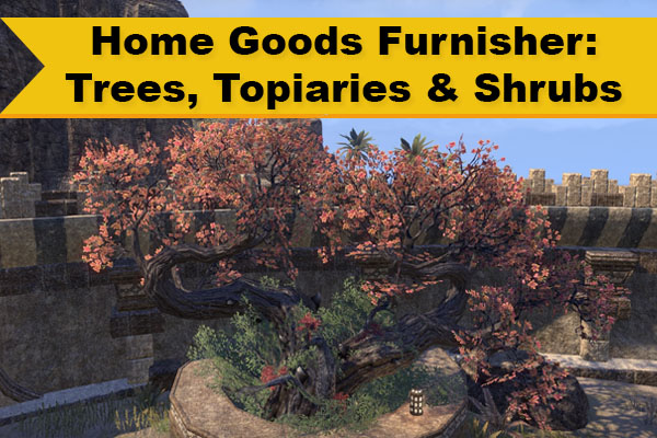 Home Goods Furnisher Trees Topiaries and Shrubs