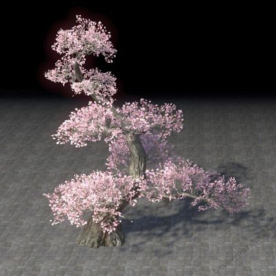 Tree, Tiered Light Cherry