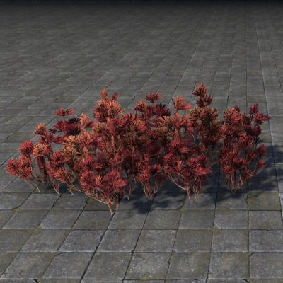 Flower Patch, Prairie-Fire
