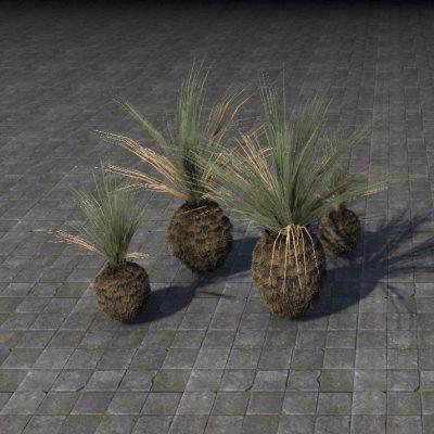 Plant Cluster, Palmetto