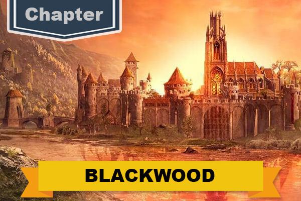 Blackwood Achievement Furnishings Banner